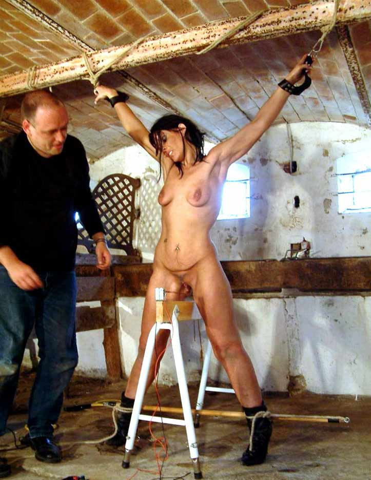 Dr lomp world body whipping - 2 3