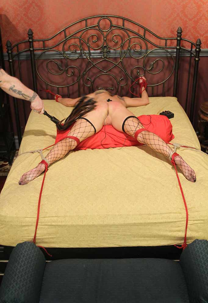 All her holes bondage xxx extreme college 10