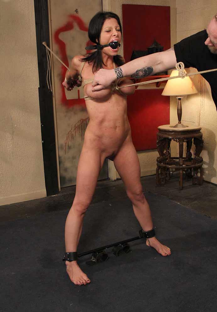 Amber estrada nude